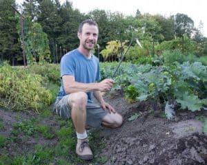 Best weeding tool - Matt at NSH Garden Blog
