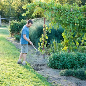 5 Tips for using a garden hoe thumbnail