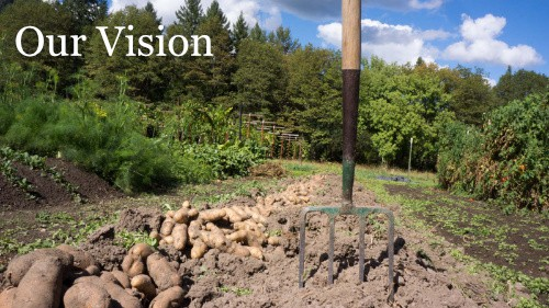 Buy Quality Garden Tools - Vision